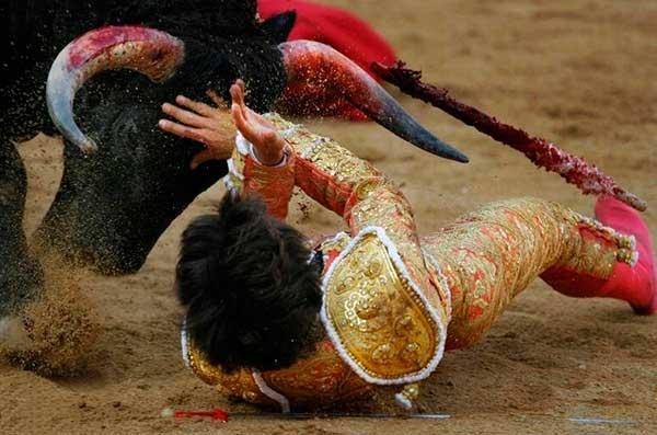 Бой с быком